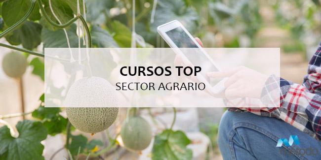 Cursos top para el sector agrario: nuestra selección